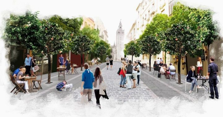 Peatonalización de la calle Mateos Gago